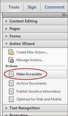 Screenshot of the Make Accessible button located in the Action Wizard sidebar.