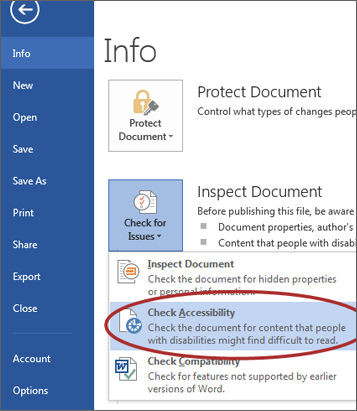 screenshot of Check Accessibility option under Info window.
