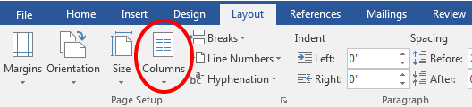 screenshot of Columns options in Page Setup panel